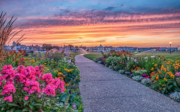 Ocean Park Flower Sunset Art | Michael Blanchard Inspirational Photography - Crossroads Gallery