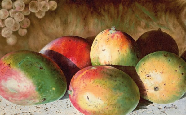 Mangos   Original Art | Mercedes Fine Art