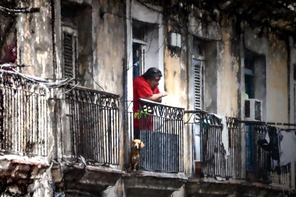 Casual Observers Photography Art | martinalpert.com
