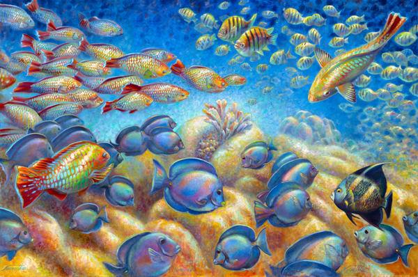 Coral, Fish & Marine Life