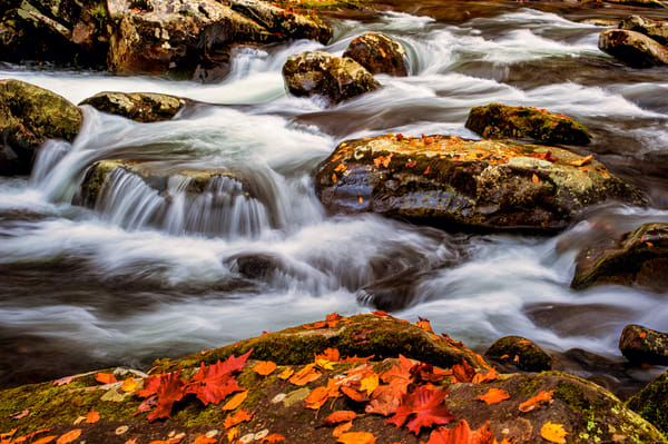 Flowing With Color Photography Art | Ken Smith Gallery