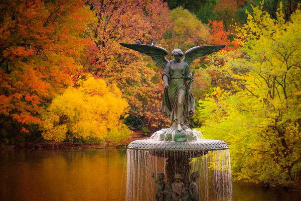Bethesda In Autumn Photography Art | Steven Rosen Photography