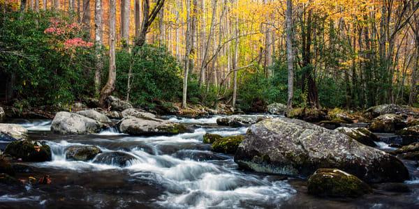 The River Runs Wild Photography Art | Ken Smith Gallery