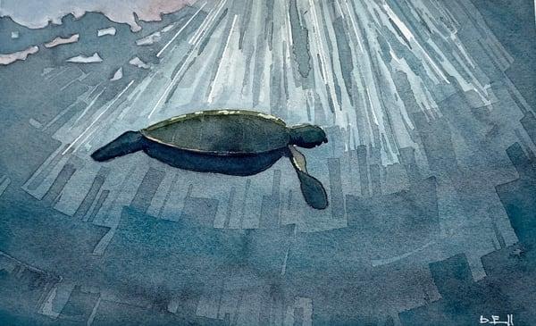 ocean, art, turtle, watercolor