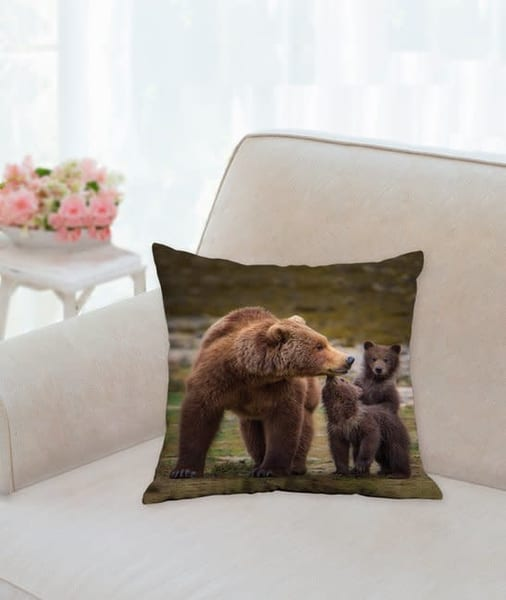 Pillow: 'coastal Brown Bear With Her Two Cubs' 14x14   Carol Brooks Parker Fine Art Photography