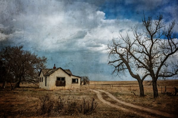 Farmed Out Photography Art | Ken Smith Gallery