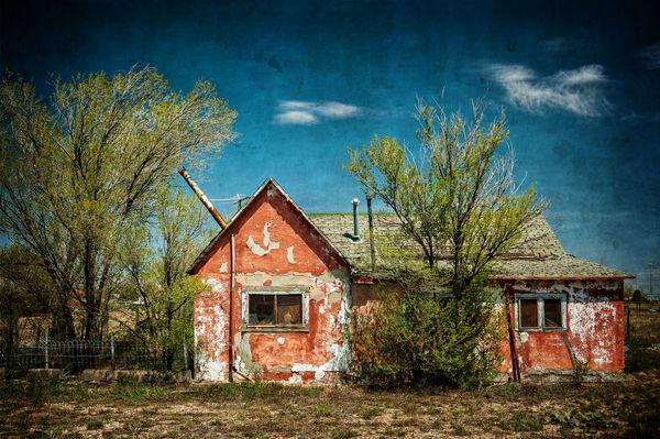 Orange Peel Photography Art | Ken Smith Gallery