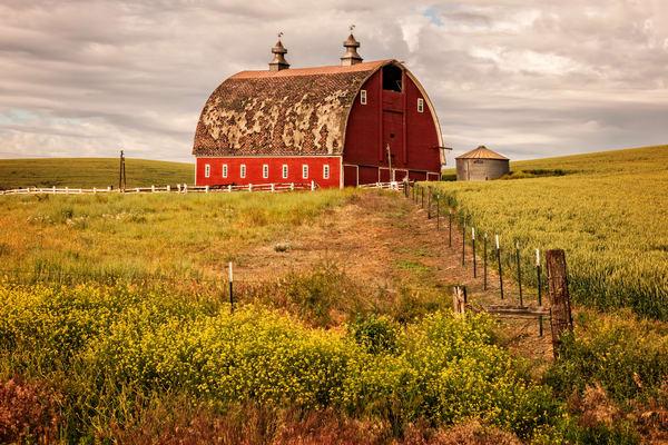 Palouse Barn Photography Art | Ken Smith Gallery