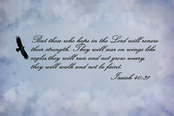 Isaiah 40:31 Photography Art | Ken Smith Gallery