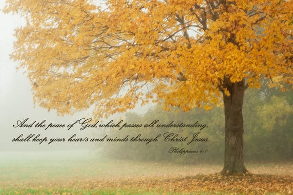 Philippians 4:7 Photography Art | Ken Smith Gallery