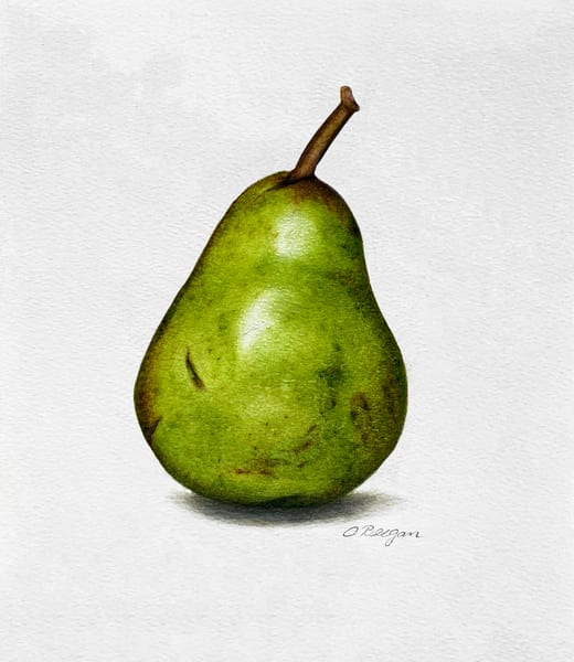 Scratched Pear No. 1, 2020, Coloured Pencil Drawing by artist Carolyn A. Beegan