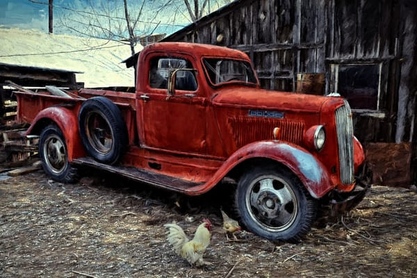 At The Chicken Coop Photography Art | Ken Smith Gallery