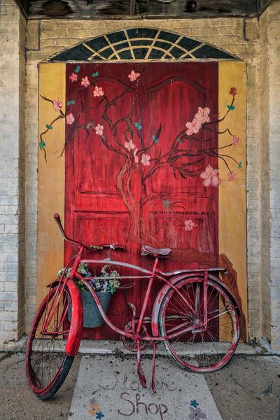Flower Shop Photography Art | Ken Smith Gallery