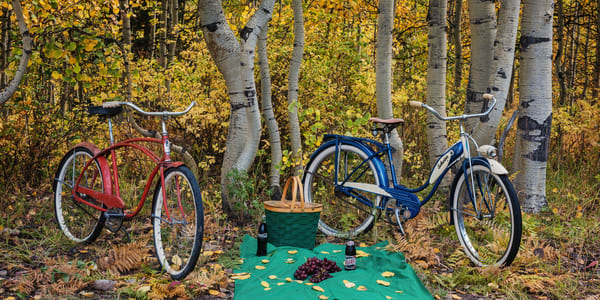 Picnic In The Woods Semi Panorama Photography Art | Ken Smith Gallery