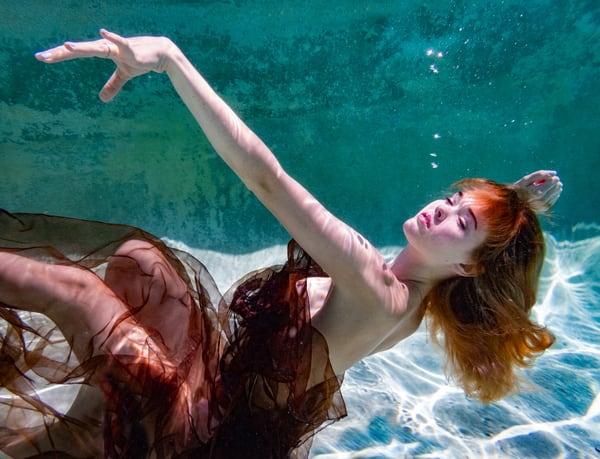 Violet Aquatic 0190 Photography Art | Dan Katz, Inc.