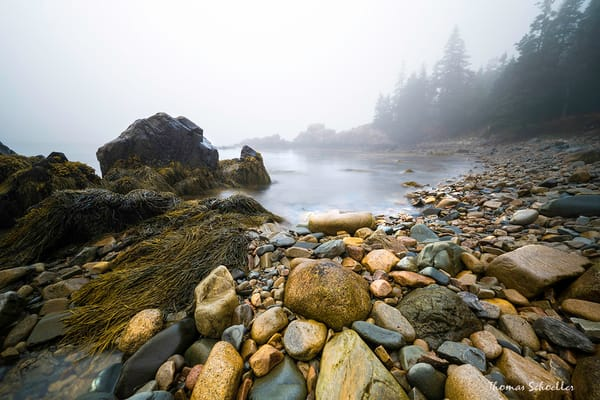 Fine Art Photography prints of Acadia National Park, Schoodic Peninsula | Thomas Schoeller Photography