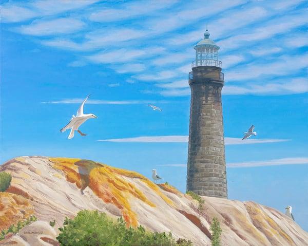 Gull Oriented Art | The Art of David Arsenault