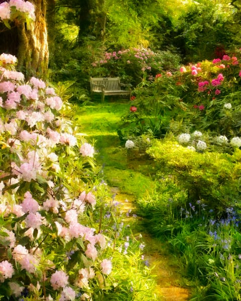 Garden Path Photography Art | Quiet Heart Images, LLC