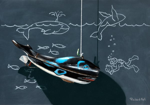Whale Watching Art | Richard Hall Fine Art