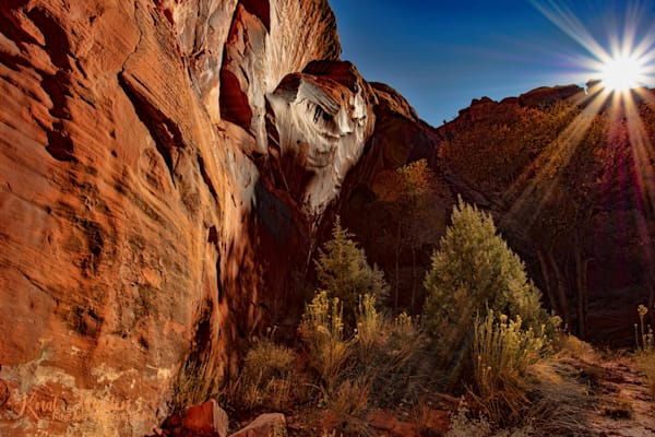 Neon Canyon Sunburst2623  Photography Art | Koral Martin Healthcare Art