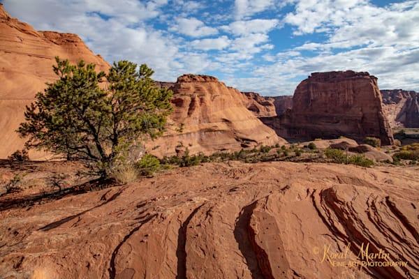 Canyon De Chelly View 3574 U 19  Photography Art | Koral Martin Healthcare Art