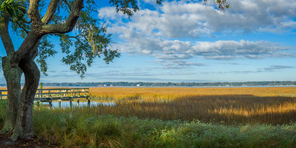 Marsh View of Calibogue Sound