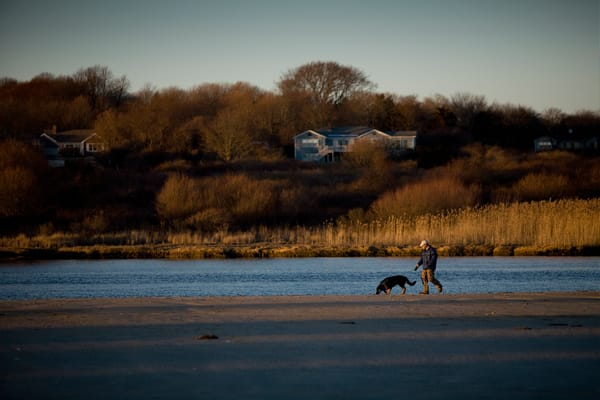 A man is walking his dog at sunset on an autumn day beside the Narrow River in Narragansett, Rhode Island.