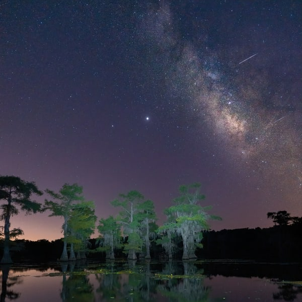 Caddo Lake 3 Photography Art | John Martell Photography