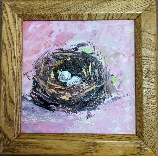 Elaine Ford - original artwork - animals - Nest in Pink