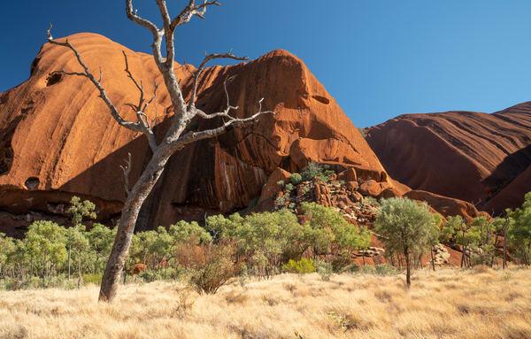 Uluru Up Close Photography Art | Tolowa Gallery