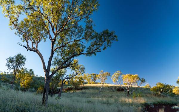 Pilbara Sunrise Photography Art | Tolowa Gallery