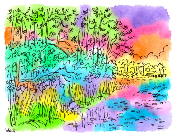 western lake, watercolor (30a), florida:  fine art prints in cheerful watercolor available for purchase online