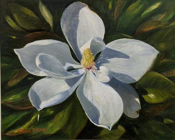 Trish Bilich - original artwork - nature - flowers - magnolia blossom - Maggie Mae