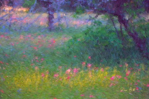 Texas Flower Meadow Art | Sharon Beth