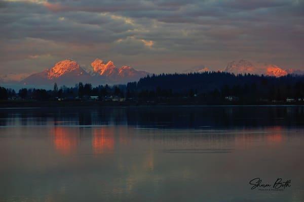 Sunset On The Harbor Art | Sharon Beth