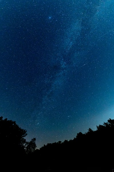 Shooting stars over Pennsylvania forest
