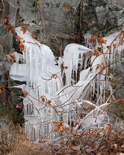 Heron Ice Sculpture, ice, janetogren.com