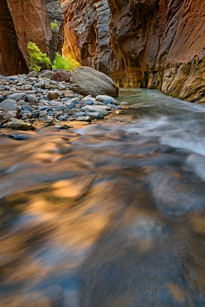 Golden flow of the narrows