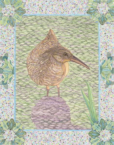 Virginia Rail reproduction of watercolor bird portrait by Judy Boyd