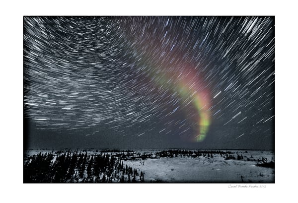 Star Trails And Aurora In A Snowy Landscape   Signed 2013 Photography Art | Carol Brooks Parker Fine Art Photography