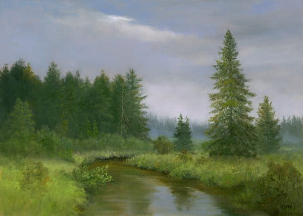 *Rainy Day At The Bloomingdale Bog, Adirondacks* Art | Tarryl Fine Art