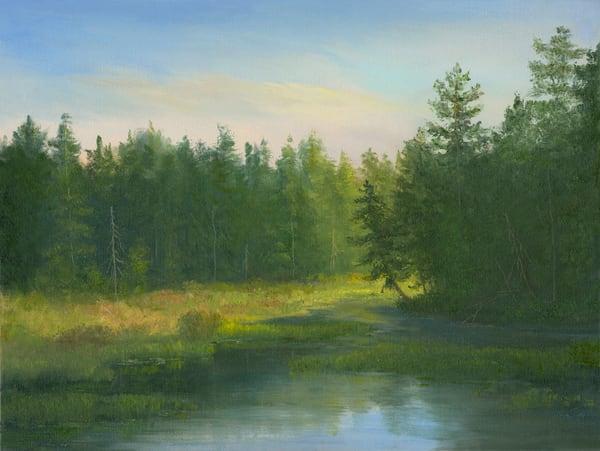 *Leaning Tree, Visitor's Interpretive Center (The Vic), Adirondacks*  Art | Tarryl Fine Art