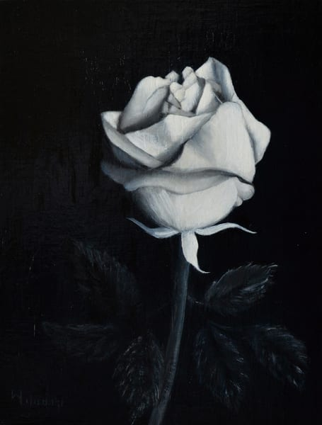 Rose In Shades Of Gray Art | Liliedahl Art