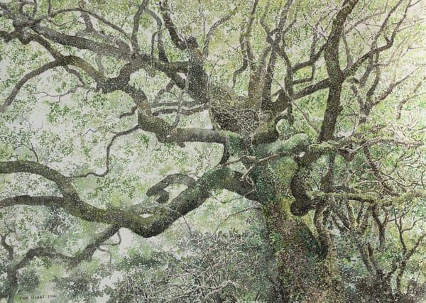 Tree Art | Romanova Art