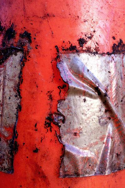 Abstract Orange San Diego Cone Detail Print – Sherry Mills