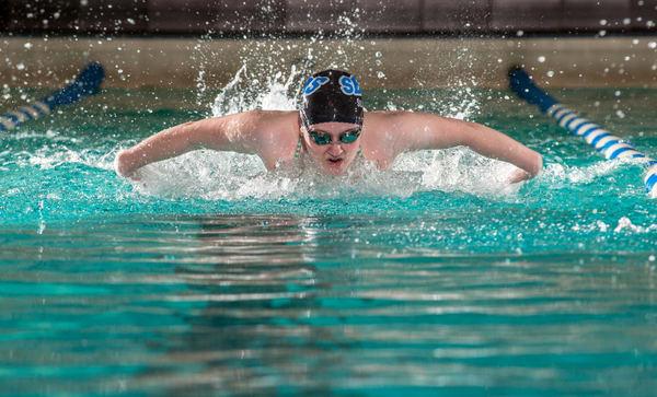 Fly Swimmer