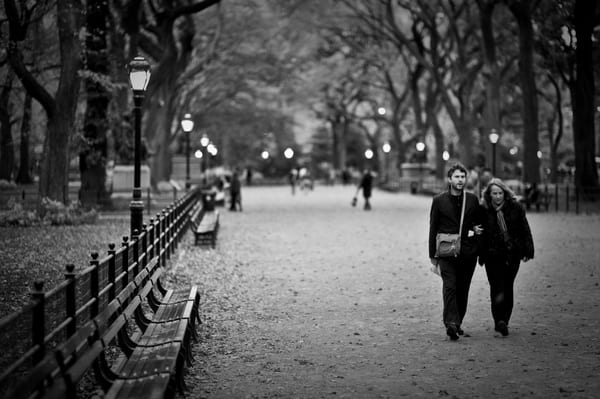 Central Park New York Stroll Photography Art | Cardinal ArtWorks LLC