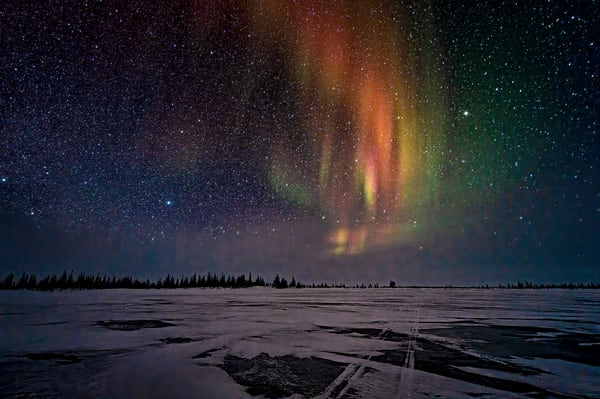 Tracks On The Ice Photography Art | Carol Brooks Parker Fine Art Photography