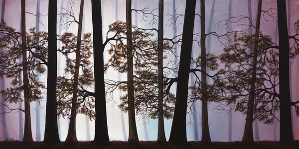 Misty Forest Art | MMG Art Studio | Fine Art Colorado Gallery