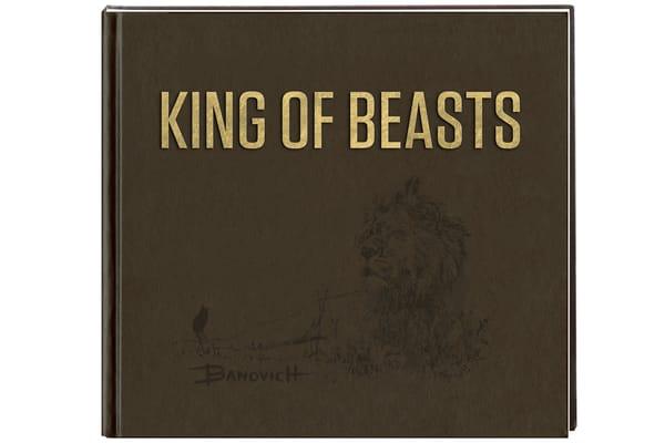 Deluxe Leather Bound Art Book: King Of Beasts   A Study Of The African Lion By John Banovich | evoartmaui
